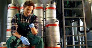 Brewer checking grains 4k. Brewer checking grains at brewery factory 4k stock footage