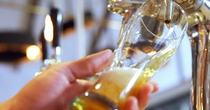 Brewer filling beer in beer glass from beer pump 4k