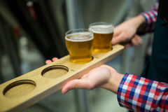 Brewer holding beer sampler tray Royalty Free Stock Photos
