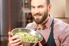 Brewer with hops Royalty Free Stock Images