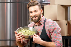 Brewer with hops Royalty Free Stock Photography