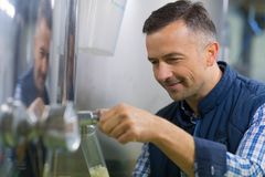 Brewer pouring beer for test Royalty Free Stock Photography