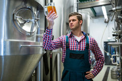 Brewer testing beer Royalty Free Stock Photo
