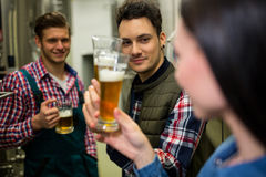 Brewers testing beer at brewery factory Stock Images