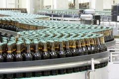 Brewery. Workshop, beer factory conveyer