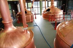 Brewery. Beer brewery and production of the beer Royalty Free Stock Photos