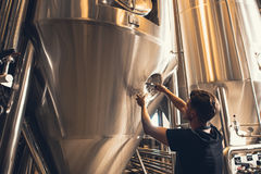 Brewery business owner testing the beer. Young man working at small craft beer making factory and checking the quality of beer. Young businessman testing the Royalty Free Stock Image