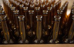 The necks of empty beer bottles, which will pour beer, top view. Brewery. The necks of empty beer bottles, which will pour beer, top view royalty free stock image