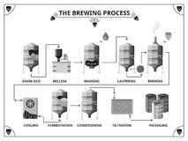 Brewery production process vector infographics. Template.  Fernentation and conditioning, filtration and packing illustration Stock Image