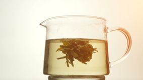Brewing green tea in a glass bowl stock footage