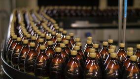 brewing Plastic flessen op transportband stock video