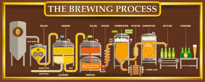 The Brewing Process info-graphic with beer design elements on brown background with golden frame. Vector image royalty free illustration