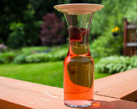 Brewing sun tea: solar power Stock Image