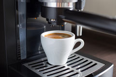Brewing tasty espresso with coffee machine. Stock Photography