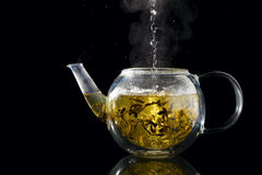 Brewing tea stock photos