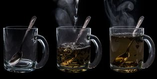 Brewing tea Stock Photography