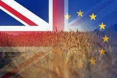 Brexit概念 夏天麦子和大麦的领域 英国国旗和E的旗子 在上面分层堆积的U 库存例证