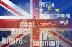 Brexit概念 夏天麦子和大麦的领域 brexit专科术语词云彩和英国国旗和E的旗子 U 向量例证