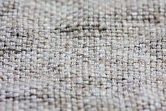 Brezentowa tkaniny tekstura Fotografia Royalty Free