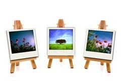 brezentowy mienia obrazu fotografii wiosna trzy biel Obrazy Stock