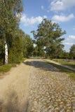 Brezo de Luneburg - camino con el guijarro en el paisaje Imágenes de archivo libres de regalías