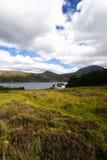 Brezo y casa en las montañas, Escocia Fotos de archivo libres de regalías