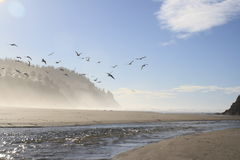 Brezza dell'oceano Immagine Stock Libera da Diritti