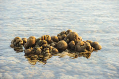 Brian corals in shallow waters during low tide stock photo