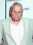 Brian Dennehy Royalty Free Stock Photos