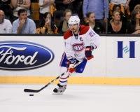 Brian Gionta Montreal Canadiens Fotografia Stock Libera da Diritti