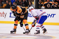 Brian Gionta v. Milan Lucic Royalty Free Stock Photography