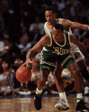 Brian Shaw, Boston Celtics Στοκ Εικόνα