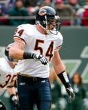 Brian Urlacher Chicago Bears Fotos de archivo