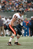 Brian Urlacher Royalty Free Stock Photography