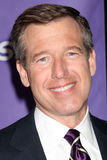 Brian Williams Royalty Free Stock Photos