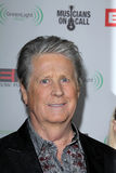 Brian Wilson Royalty Free Stock Photos