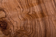Briar-root wood texture Royalty Free Stock Photography
