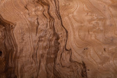 Briar-root wood texture Stock Photo