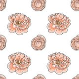 Briar rose color sketch seamless Stock Photos