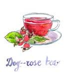 Briar tea Royalty Free Stock Photo