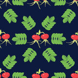 Briars Seamless Pattern Royalty Free Stock Image