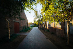 Brick alleyway on the campus of Yale University, in New Haven, C Stock Image