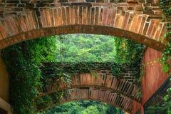 Brick archway covered with vines. Orange brick archway covered with green vines Stock Image