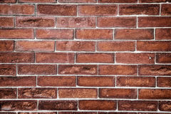 Brick Background. A exceptional brick wall, background Royalty Free Stock Photography