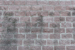 Brick background. Old brick wall as a background image Stock Photography