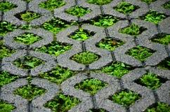 Brick block with grass. Royalty Free Stock Photos