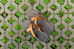 Brick block with grass and shoes. Brick block with green grass and shoes Royalty Free Stock Photography