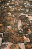 Brick block pavement Royalty Free Stock Photos