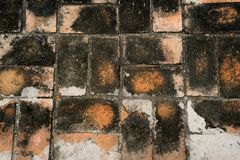 Brick block pavement Stock Photography