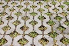Brick block walking pavement way Stock Photography